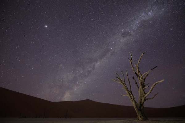 """Namibia Night"" by Susan McClure"